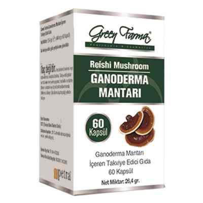 green farma kırmızı mantar ganoderma mantarı 60